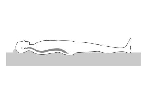 適切な寝姿勢を保持する機能